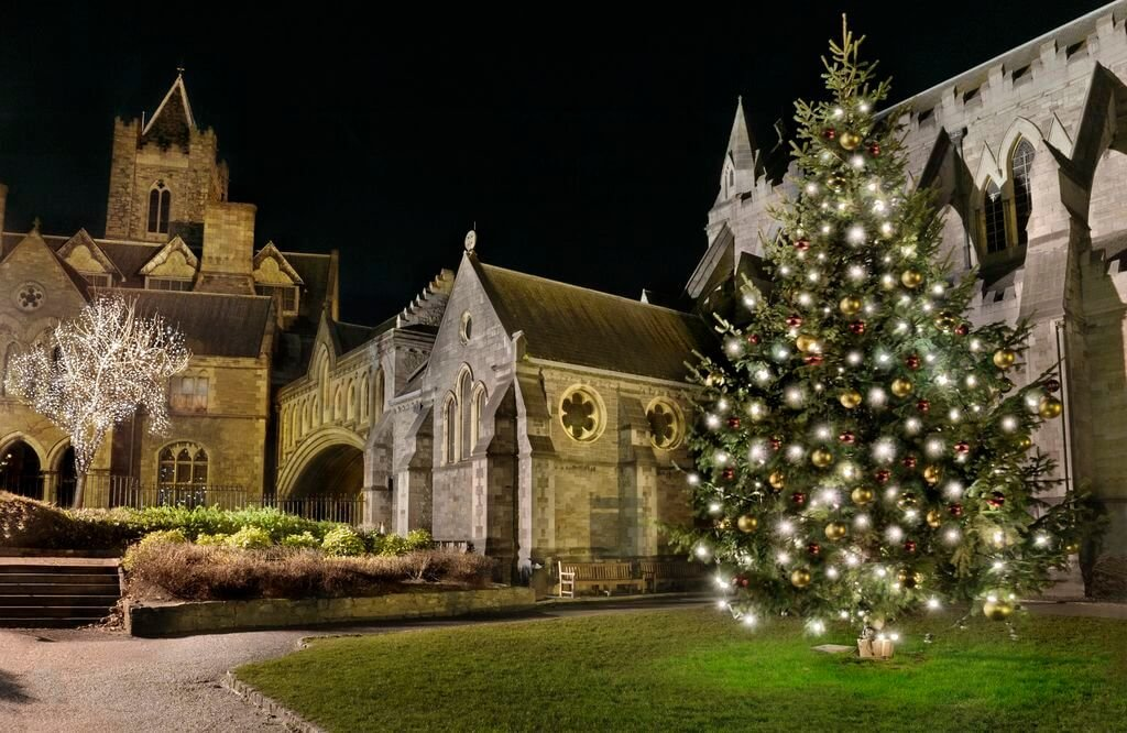 Christchurch lit up at night with a Christmas tree in front of it
