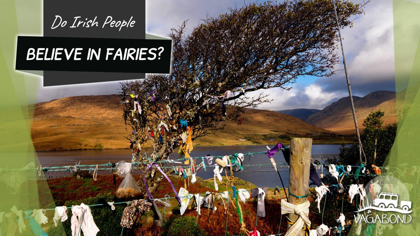 Do Irish People Believe In Fairies? Fairy Rag Tree in Killary Harbour, Ireland