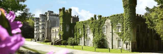 An exterior view of Ballyseede Castle covered in Ivy on a sunny day