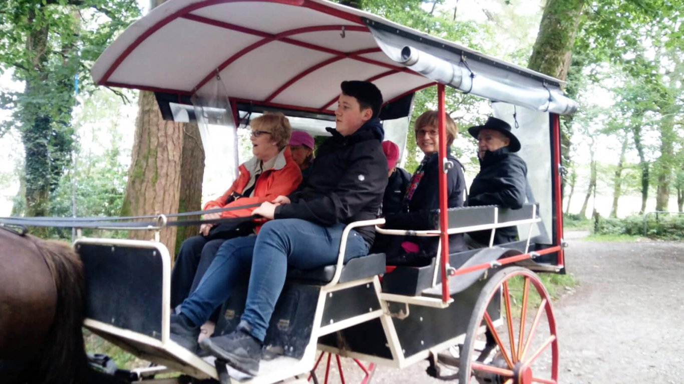 A tour group on a horse drawn jaunting carriage in Killarney, Ireland