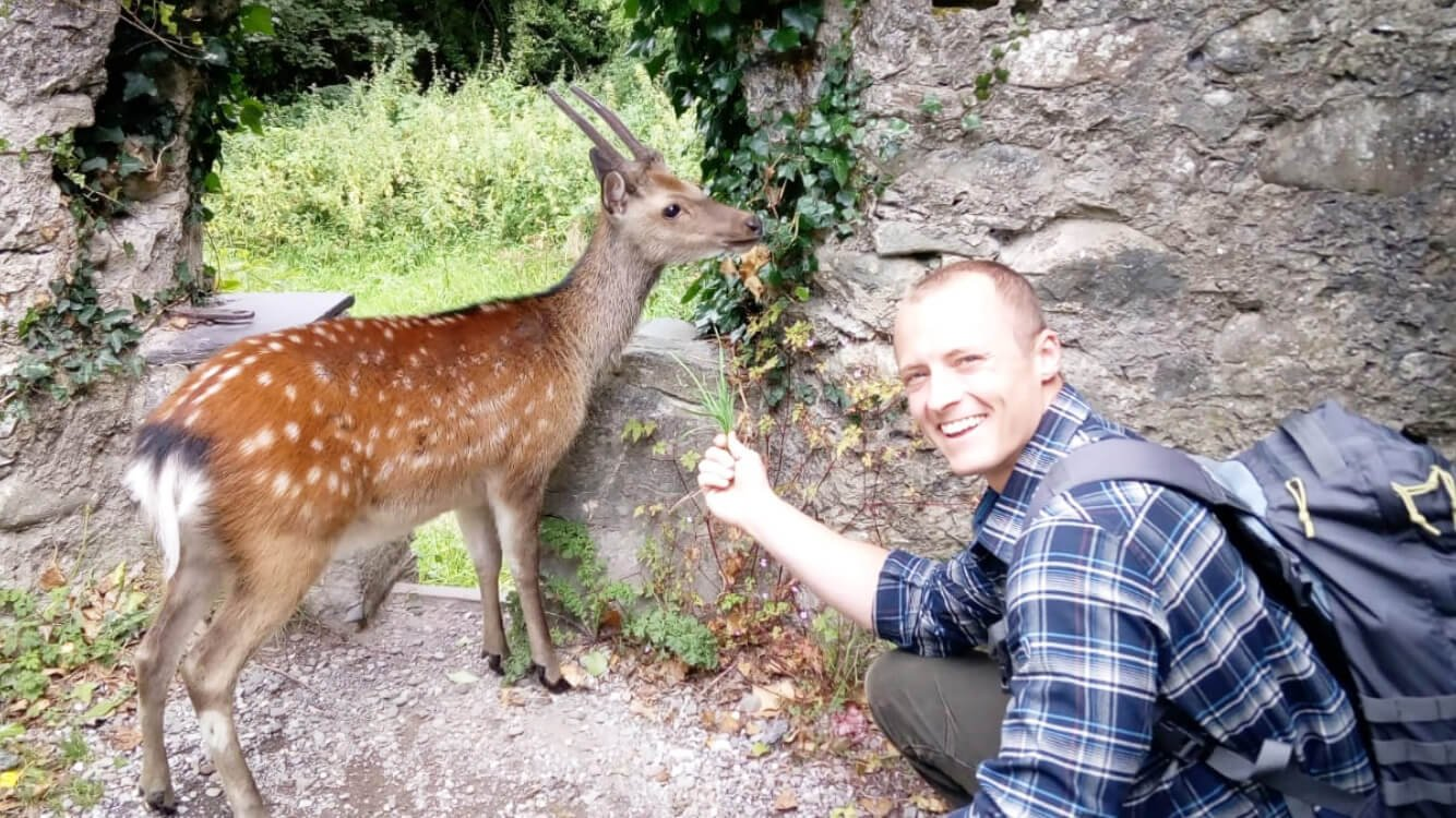 Vagabond tour guest with deer in Killarney National Park, Ireland