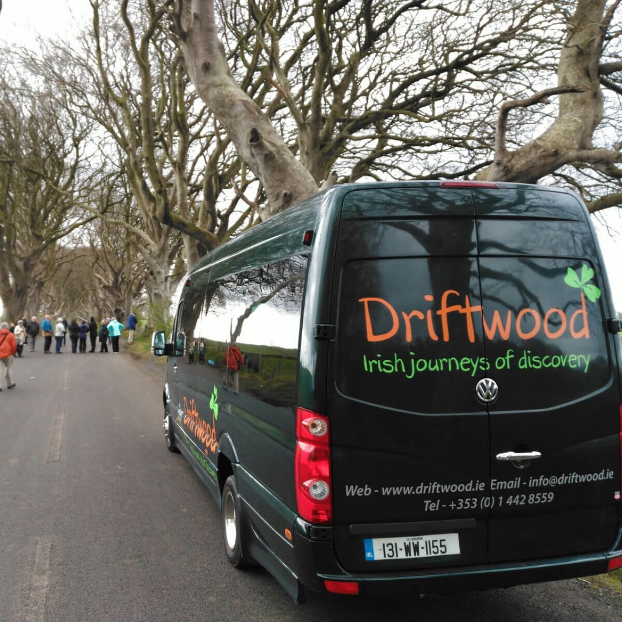 Visiting the dark hedges in Northern Ireland