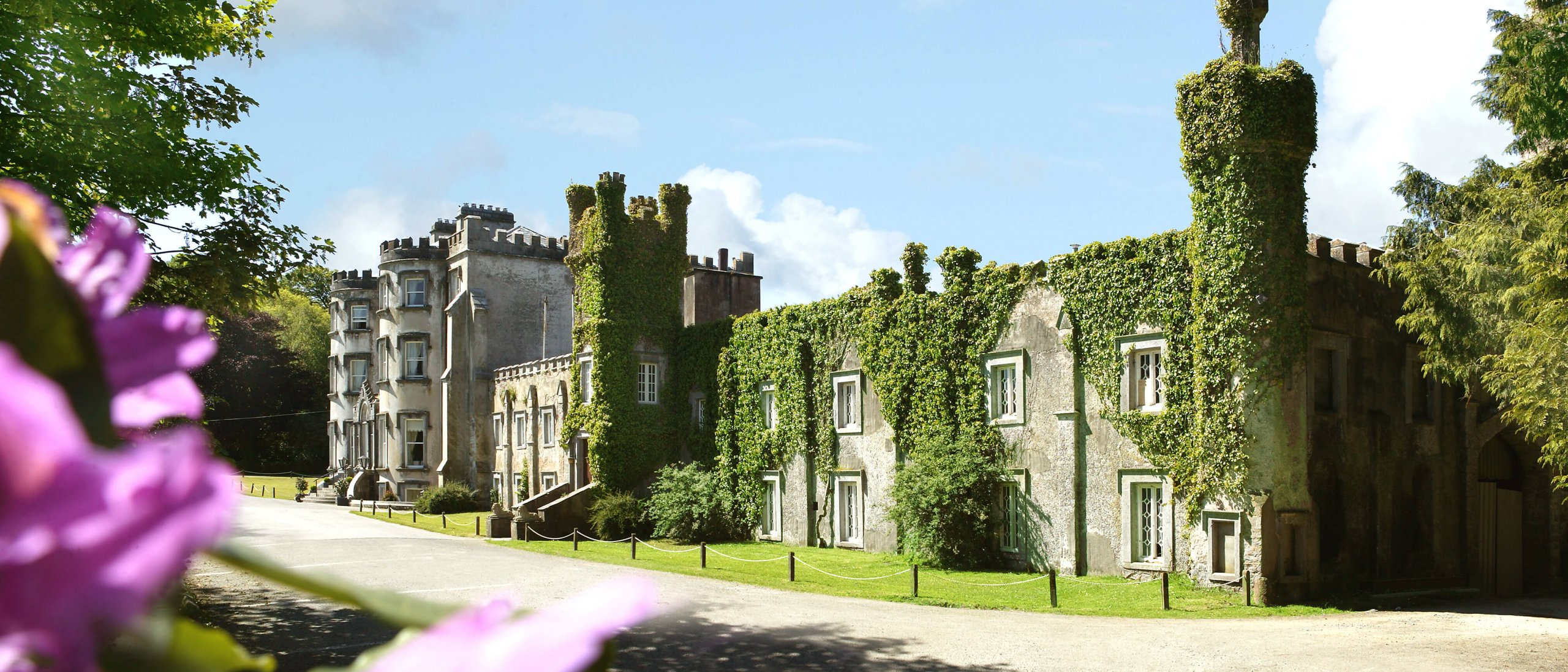 Stay in an Irish castle - Foliage covers the exterior of Ballyseede Castle Hotel in Ireland