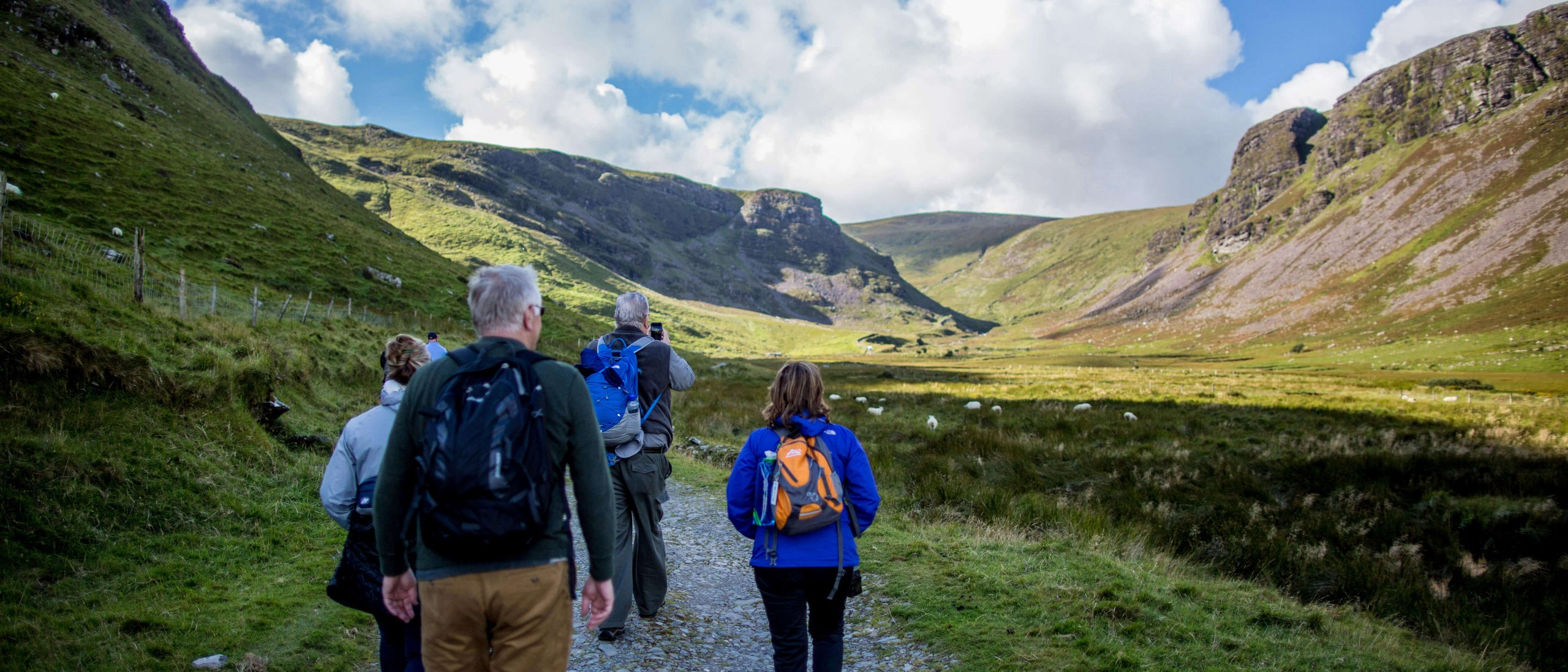 Hiking group with Vagabond tours in a green valley in Ireland