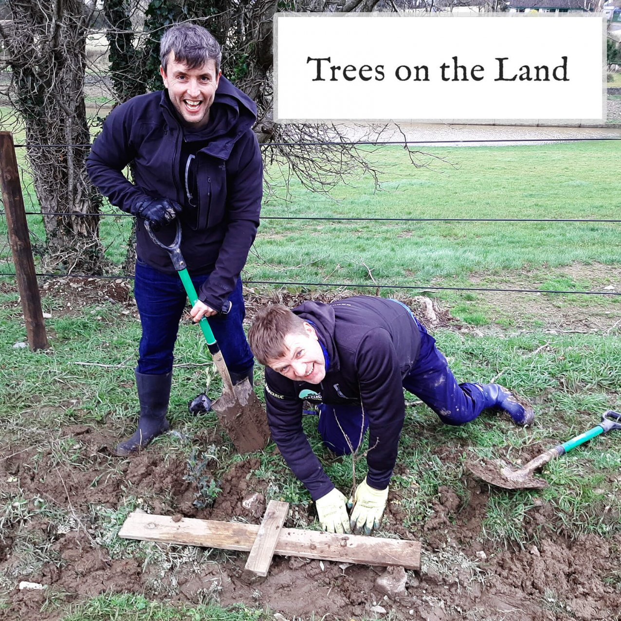 Two men planting trees with Trees on the Land logo