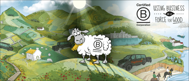 Illustrated landscape featuring sheep with BCorp logo