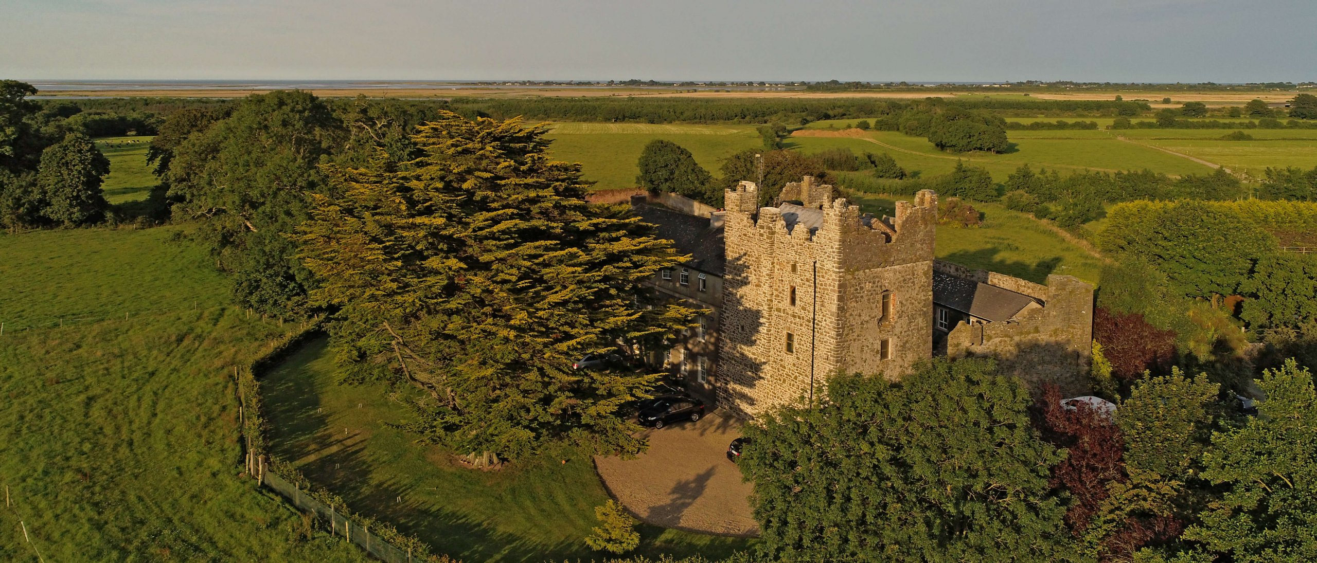 Killiane Castle surrounded by trees in Wexford, Ireland
