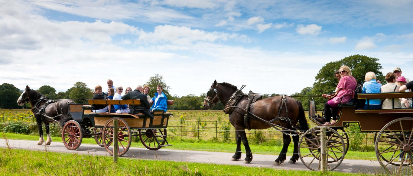 Two carriages with horses, drivers and passengers in Killarney National Park in Ireland