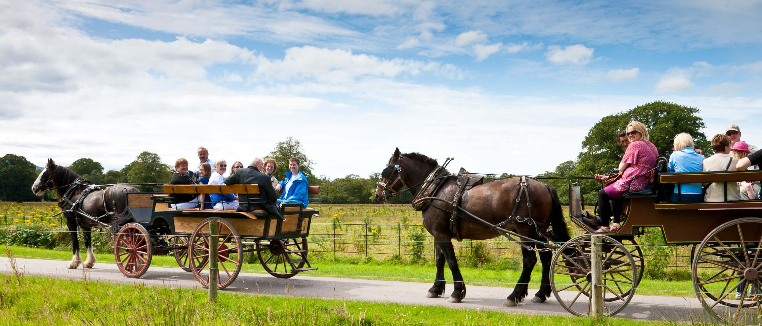 Two horse-drawn jaunting carriages in Killarney National Park, Ireland