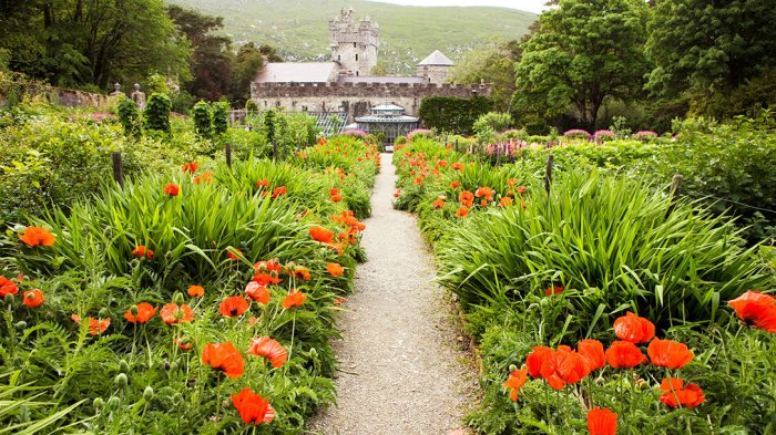 The exterior of the Glenveagh Castle Gardens with bright red flowers and green plants