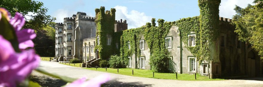 Foliage-covered exterior of Ballyseede Castle in Tralee, Kerry