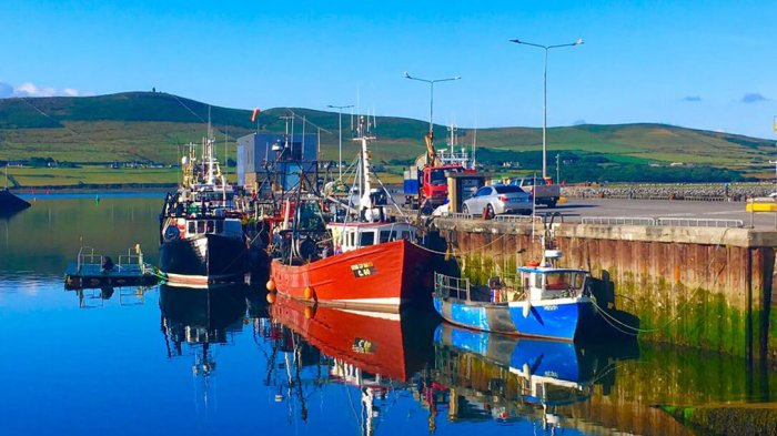 Fishing boats docked in Dingle harbour in the sunshine
