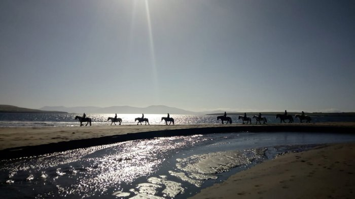 Vagabonds horse riding in a straight line on Ventry Beach in Dingle.