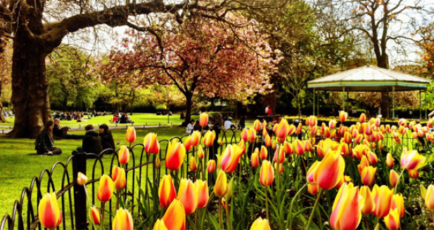 St Stephen's Green, Dublin abloom with flowers in Spring.