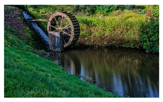 Watermill Beech Hill