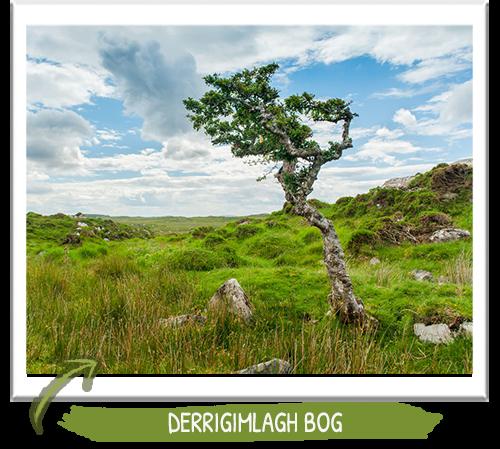 Connemara Ireland - Stunning Photos of this Irish Landscape