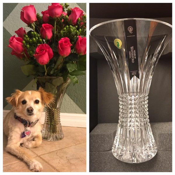 Mark Montgomery - Winner of the March & April 2017 Photo competition, and beautiful Waterford crystal vase.