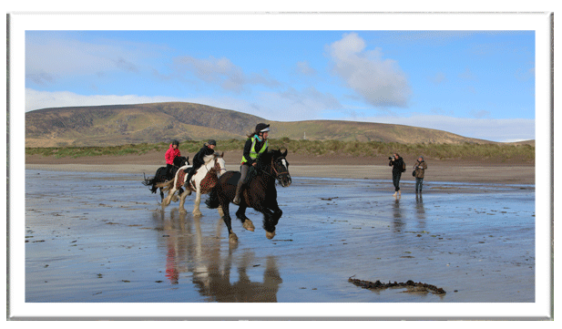 Galloping along Ventry Beach