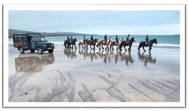 Horse riding along the beach with a VagaTron tour vehicle in close attendance