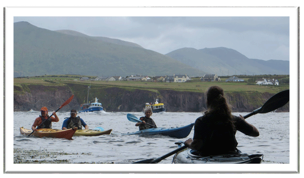 Kayaking in Dingle Harbour