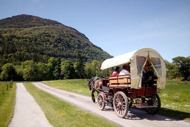 Jaunting around the Killarney National Park in Kerry