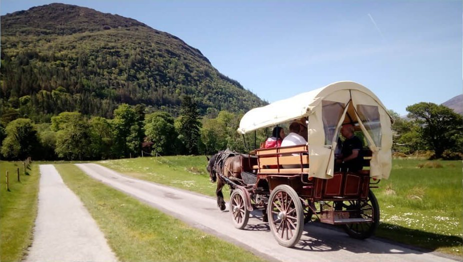 Jaunting by horse drawn carriage in Killarney National Park