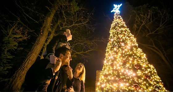 Family look up at Christmas tree