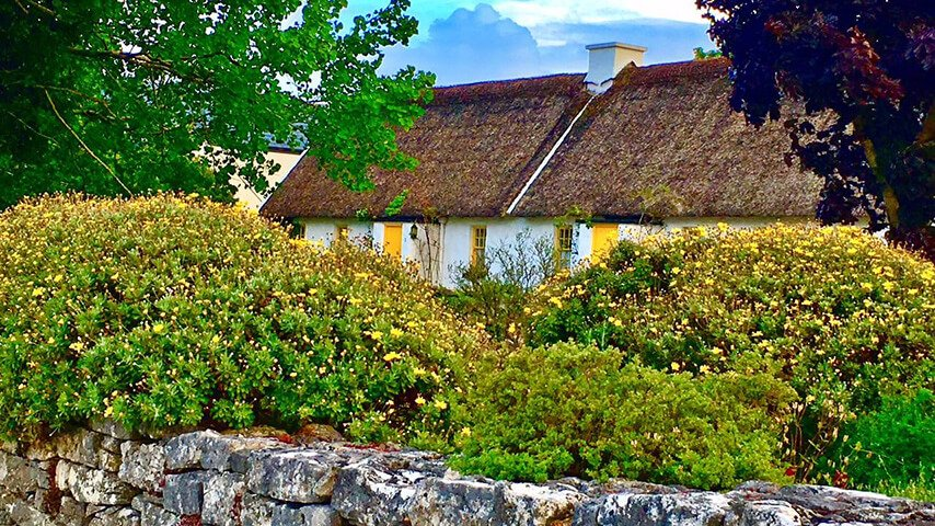 Guest Judy Marazas' image of cottages in Ballyvaughan